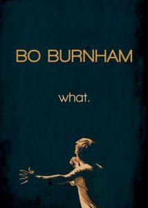 Bo.Burnham.what.2013.1080p.NF.WEB-DL.DD2.0.x264-monkee – 1.7 GB