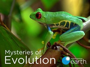 Mysteries.of.Evolution.S01.720p.AMZN.WEB-DL.DDP2.0.H.264-WELP – 5.5 GB