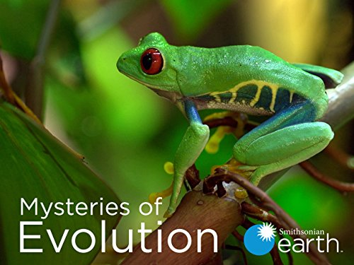 Mysteries of Evolution