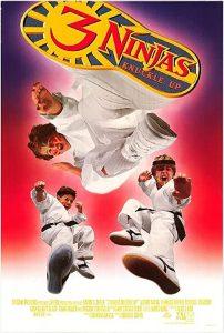 3.Ninjas.Knuckle.Up.1995.1080p.AMZN.WEB-DL.DDP2.0.x264-ABM – 8.6 GB