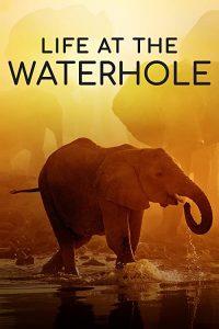 Life.at.the.Waterhole.S01.720p.AMZN.WEB-DL.DDP2.0.H.264-NTb – 5.9 GB