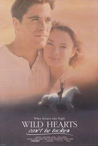 Wild.Hearts.Cant.Be.Broken.1991.720p.WEB-DL.AAC2.0.H264-alfaHD – 2.6 GB