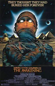 The.Awakening.1980.1080p.BluRay.REMUX.AVC.FLAC.2.0-BLURANiUM – 23.6 GB