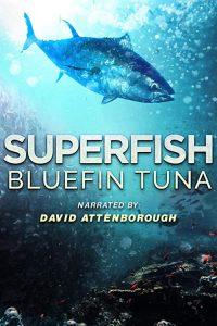 Superfish.Bluefin.Tuna.2012.1080p.AMZN.WEB-DL.DDP.2.0.H264-AMC – 4.6 GB