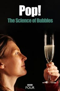 Pop.the.Science.of.Bubbles.2013.1080p.AMZN.WEB-DL.DDP2.0.H.264-TEPES – 3.8 GB