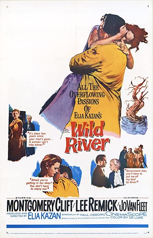 Wild.River.1960.1080p.BluRay.REMUX.AVC.DTS-HD.MA.2.0-EPSiLON – 20.8 GB
