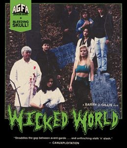 Wicked.World.1991.720P.BLURAY.X264-WATCHABLE – 3.2 GB