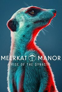 Meerkat.Manor.Rise.Of.The.Dynasty.S01.1080p.AMZN.WEBRip.DDP5.1.x264-TEPES – 11.9 GB