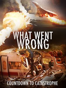 What.Went.Wrong.Countdown.to.Catastrophe.S01.1080p.AMZN.WEB-DL.DDP2.0.H.264-NTb – 17.0 GB
