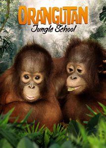 Orangutan.Jungle.School.S01.720p.WEB-DL.DD+2.0.H.264-KAIZEN – 19.9 GB