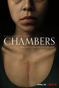 Chambers.2019.S01.1080p.NF.WEB-DL.DDP5.1.Atmos.DV.HEVC-FLUX – 18.3 GB