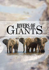 Rivers.of.Giants.2005.1080p.AMZN.WEB-DL.DDP2.0.H.264-SMALLDOC – 3.4 GB
