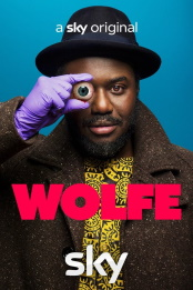 Wolfe.S01E01.720p.AHDTV.x264-DARKFLiX – 911.8 MB
