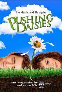 Pushing.Daisies.S01.1080p.BluRay.x264-CtrlHD – 39.3 GB