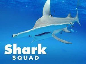 Shark.Squad.S01.720p.PMTP.WEB-DL.AAC2.0.H.264-NTb – 1.7 GB