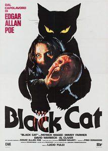The.Black.Cat.1981.1080p.BluRay.Remux.AVC.Flac.1.0-SPHD – 22.9 GB