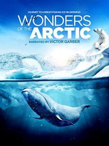 Wonders.of.the.Arctic.2014.IMAX.1080p.Blu-ray.3D.Remux.AVC.Atmos-KRaLiMaRKo – 11.4 GB