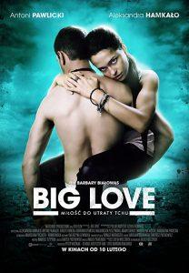 Big.Love.2012.720p.WEB.H264-FLAME – 2.2 GB