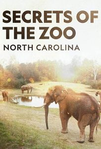 Secrets.of.the.Zoo.North.Carolina.S01.720p.DSNP.WEB-DL.DDP5.1.H.264-NTb – 10.4 GB