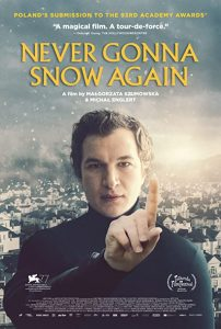 Never.Gonna.Snow.Again.2020.1080p.BluRay.x264-FLAME – 12.3 GB